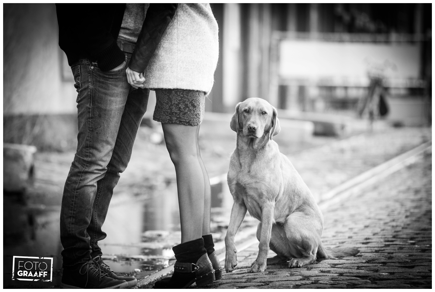 loveshoot rotterdam met de hond_1459