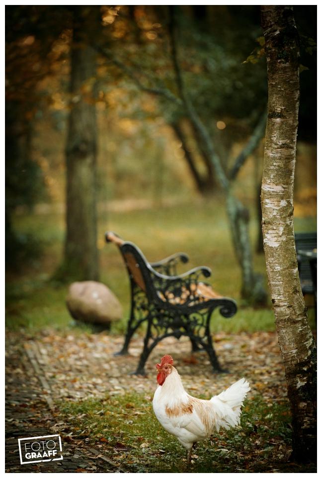 bruidsfotografie Goeree Overflakkee fotograaff_122