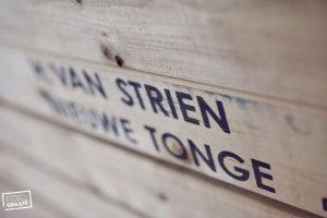 boerenbruiloft-op-goeree-overflakkee-032